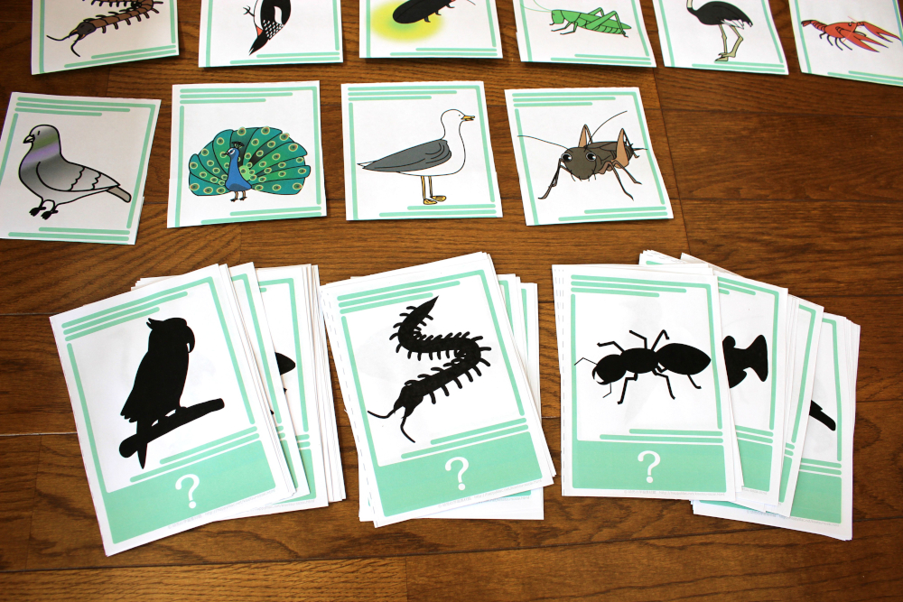 クイズ 動物 クイズ 幼稚園 : 動物のイラストが楽しい、幼児 ...