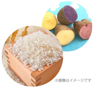 【北海道産の食材を知ろう】 栄養豊かな北海道の色々なじゃがいもとお米