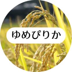 お米 ゆめぴりか