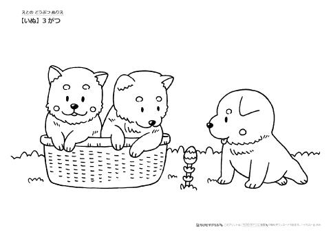 ぬりえ干支いぬ犬の季節ぬりえ幼児教材知育プリントちび