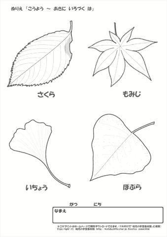 ぬりえ 【秋の季節行事,1】|幼児教材・知育プリント|ちびむす