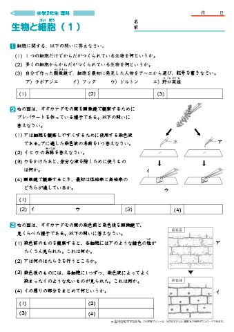 理科 中 2